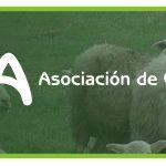 Ovica Asociación de Criadores de Ovino e Caprino de Galicia